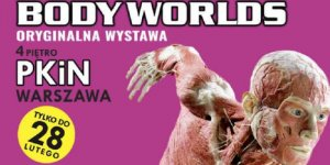 Body Worlds - plakat