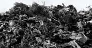 Kryzys śmieciowy na Mazowszu