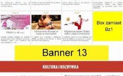 Układ reklam na stronie głównej