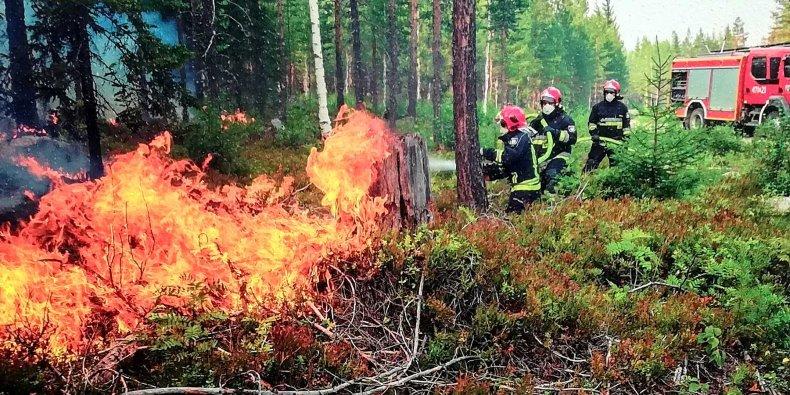 Misja Szwecja walka z ogniem