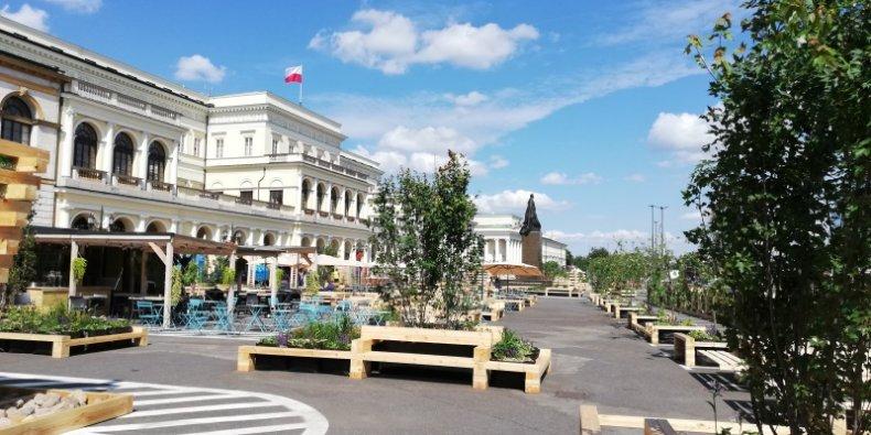 Plac Bankowy w drewnie i zieleni