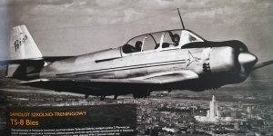 Samolot Bies zaprojektowany w Instytucie Lotnictwa pod kierunkiem Tadeusza Sołtyka