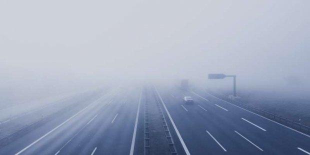 Motoryzacja w ostrym cieniu mgły czyli mgła na drodze. Foto Markus Spiske (pexels)