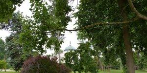 Pałac Lubostroń w parku